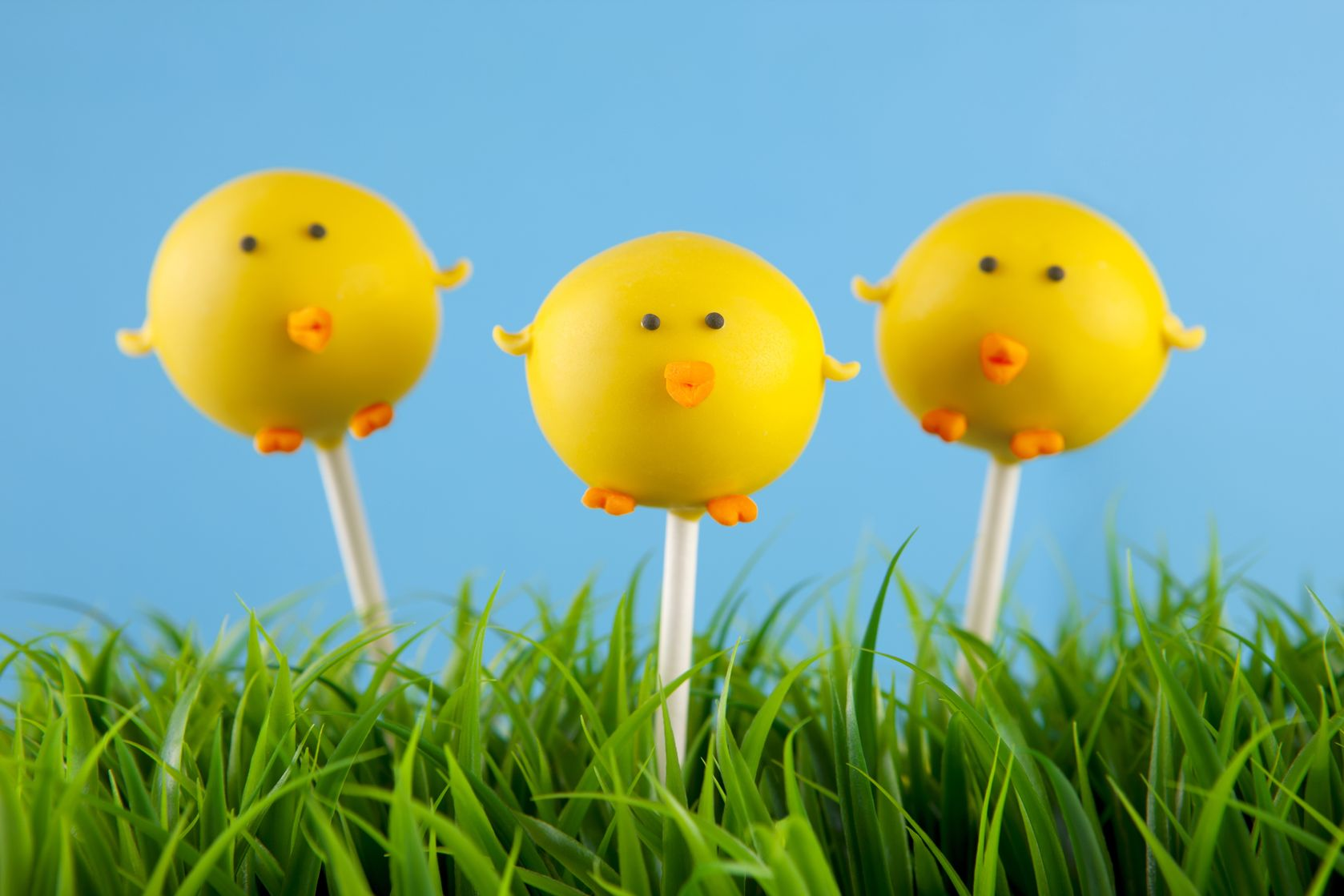 Chick Cake Pops Images : Easter Chicks Chicago Cake Pops